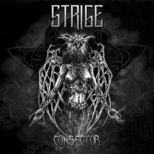 album Consector - strige