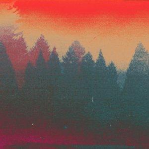 album Antera - Karoshi