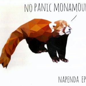 album Napenda - No Panic Monamour