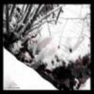 album e24 - Tetra-Pak