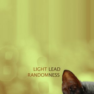 album Randomness - Light Lead