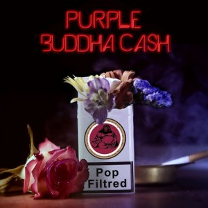 album Pop Filtred - Purple Buddha Cash