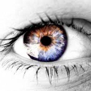 album Essere i tuoi occhi - LOGAN