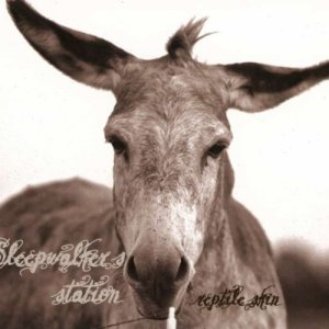 album reptile skin - Sleepwalker's station
