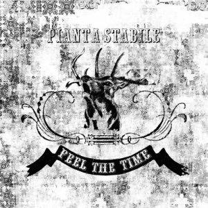 album FEEL THE TIME - Pianta Stabile