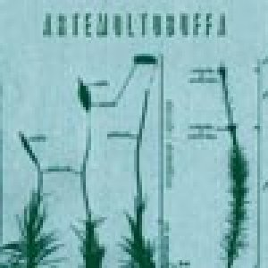 album Stanotte/stamattina - Alberto Muffato (artemoltobuffa)