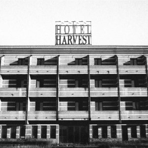 album Hotel Harvest - Mr Furto & Lady Paccottilla