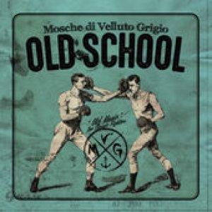 album Old School - Mosche Di Velluto Grigio