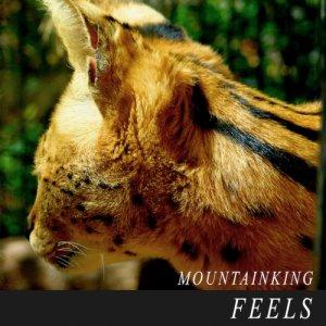 album FEELS - Mountain King