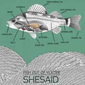 album Fish out of water - Shesaid