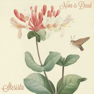 album Niva is Dead - Stesista