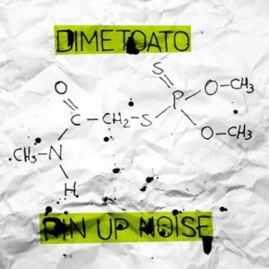 album Dimetoato - pin up noise