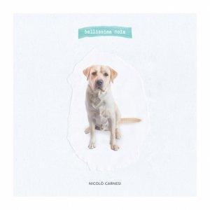 album Bellissima noia - Nicolò Carnesi