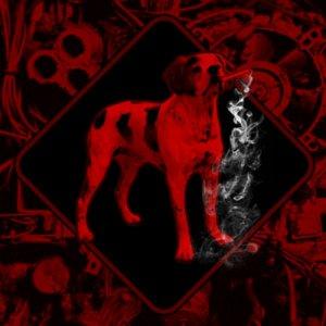 Zenith Demo 2016 copertina