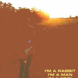 album I'm a Rabbit, I'm a Man, I'm a Fool - a Big Silent Elephant