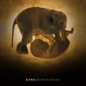 Düne Rest In Peace copertina