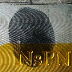 album Non Expedit - Nova sui prati notturni