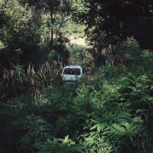 album Early Works - White Sucks