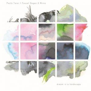 album Dream in a landscape (feat. Fauve! Gegen A Rhino) - Paolo Tarsi