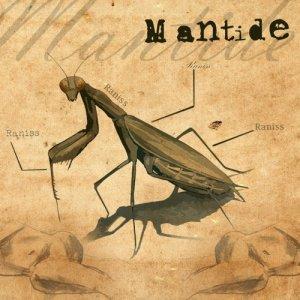 album Mantide - Raniss
