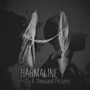 album A Thousand Pictures - Harmaline