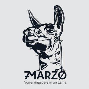 album VORREI RINASCERE IN UN LAMA - 7MARZO