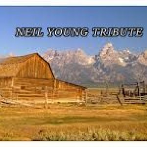 album NEIL YOUNG TRIBUTE - Alex Snipers