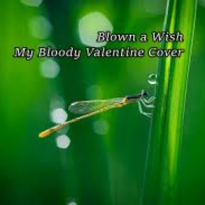 album BLOWN A WISH MY BLOODY VALENTINE COVER - Alex Snipers