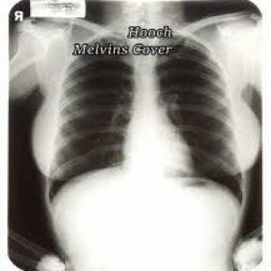 album HOOCH MELVINS COVER - Alex Snipers