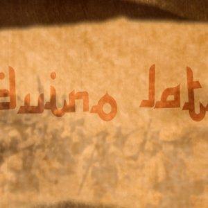 album Beduino Latino - Organico Ridotto