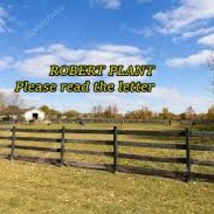 album ROBERT PLANT COVER - Alex Snipers