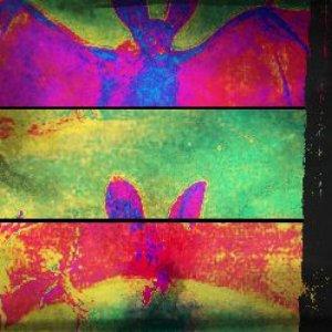 album Gusci - Porco Rosso