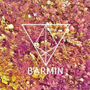 album Release - Barmin