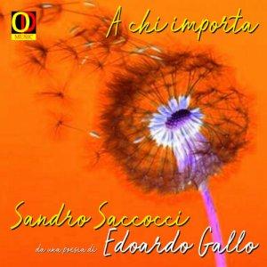 album A chi importa (single) - Sandro Saccocci & Piero Olmeda
