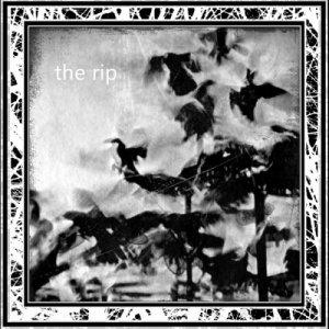 album the rip - the rip