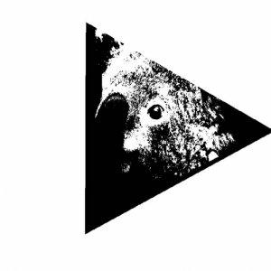 album Winter is Coming [Leaves Version] - Køala