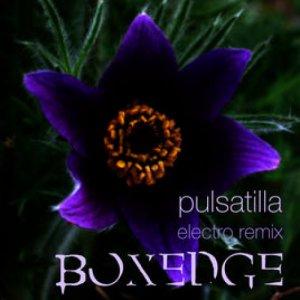 album Pulsatilla (electro remix) - Boxedge