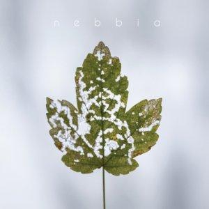 album Nebbia - Simone Nebbia