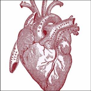 album Love Songs - Nic Sarno