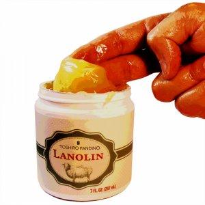 album Lanolin - Toshiro Pandino