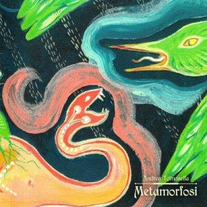 album METAMORFOSI - Andrea Tomasella