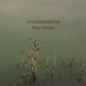 album THE FOREST - Maddalena