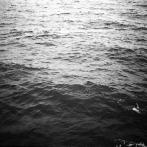album Riverberi - Il Fieno