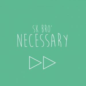 album necessary - sk&brò