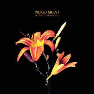 album So Much Pressure - Indigo Quest