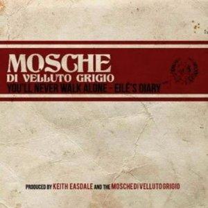 album You'll Never Walk Alone- Eilés Diary - Mosche Di Velluto Grigio