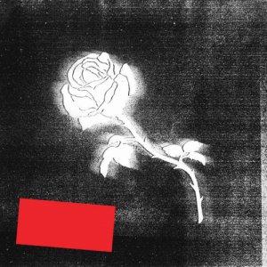 album LIBERATO - LIBERATO