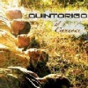 album Il Cannone - Quintorigo