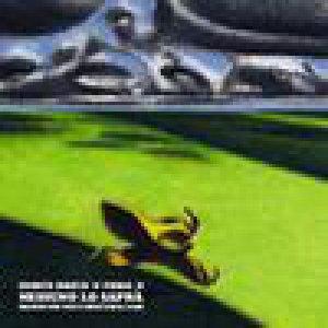 album Nessuno Lo Saprà <i>(Enrico Brizzi + Frida X)</i> - Split