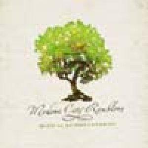 album Dopo il lungo inverno - Modena City Ramblers